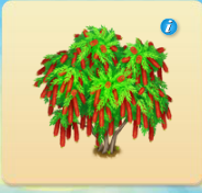 Bottlebrush Tree.PNG